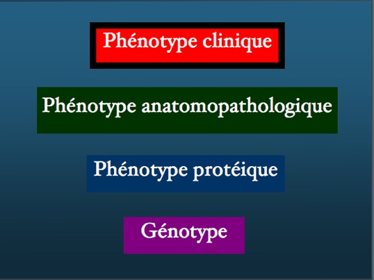 phenotypeclinique4.jpg